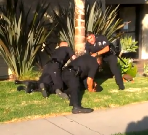 Venice Cops Beating up Ronald Weekly